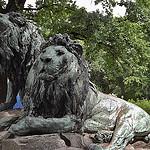 berlin date sommer tierpark - ohlala